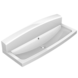 Wash trough with rear wall
