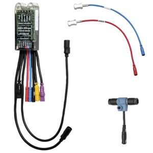 Electronic module for drinking water heater